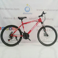 24 evergreen ranger junior mountain bike
