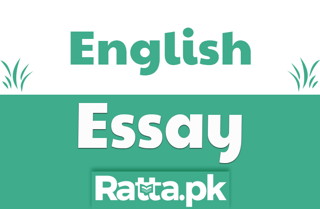 Corruption in Society English Essay