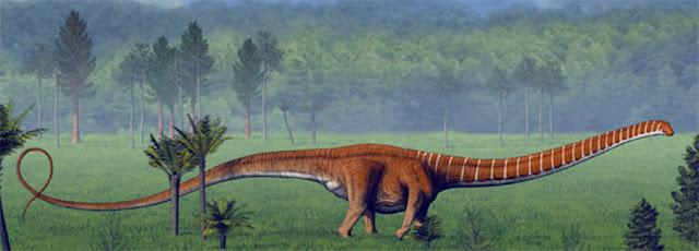 Barosaurus | facts | size