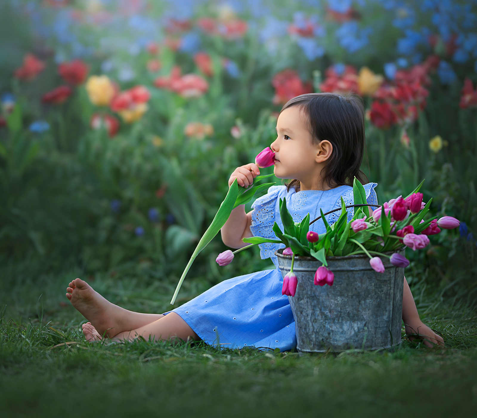 Child and baby photographer DeKalb sycamore geneva little girl in tulips