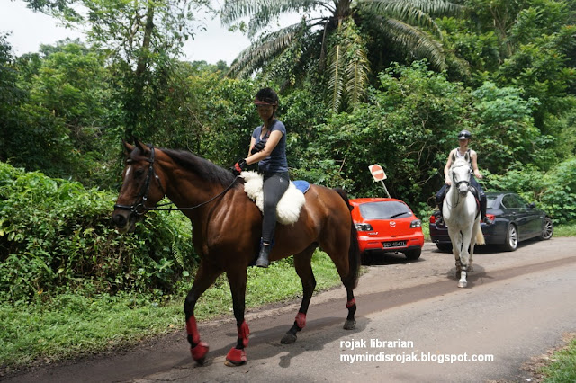 Bukit Brown horses
