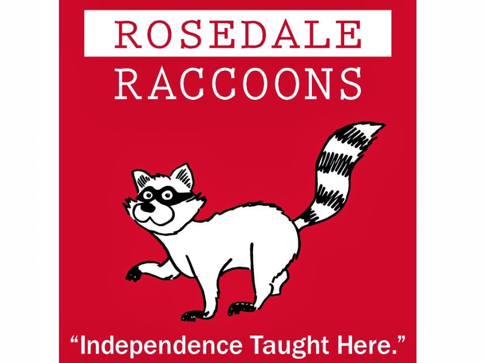 Rosedale Raccoons T-Shirt Illustration by David Borden