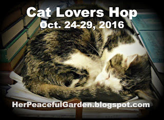 2016 Cat Lovers Hop Badge