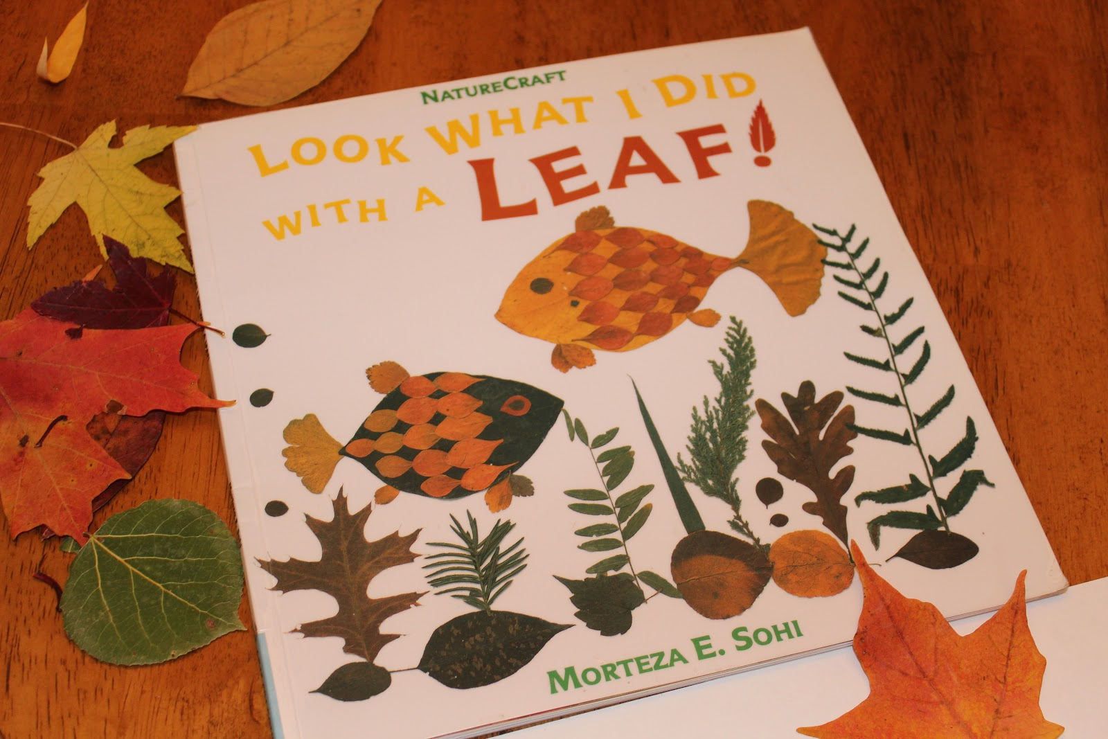 dearly loved mist: Leaf Art