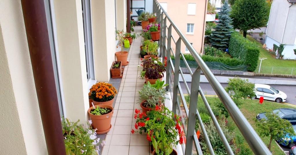 comment faire un jardin de balcon comment fait. Black Bedroom Furniture Sets. Home Design Ideas