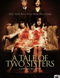A Tale of Two Sisters | Bmovies