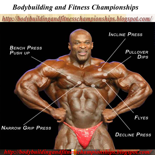 Best Chest Workout For Fitness and Bodybuilder - Read Now - Bodybuilding and Fitness Championships