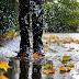 Kádár Sára Hajnalka: Tél az őszben