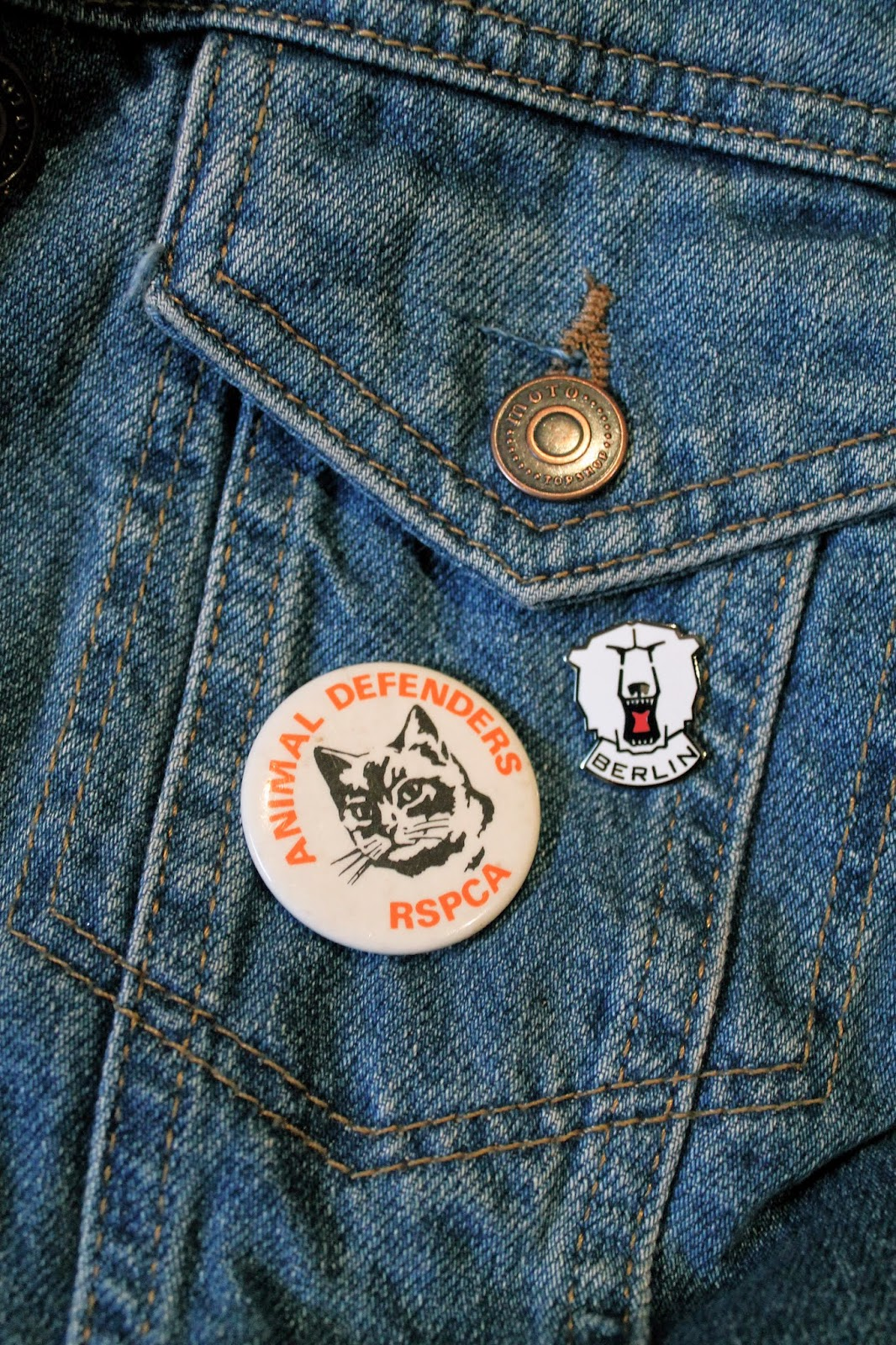 cats badge berlin badge