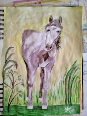 watercolor sketch of white, painted horse, by Gloria Poole
