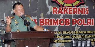 Panglima TNI Jendral Gatot Nurmantyo Memintra Para teroris yang masih tersisa dari anggota Santoso agar segera turun gunung untuk kembali bersama masyarakat - Commando