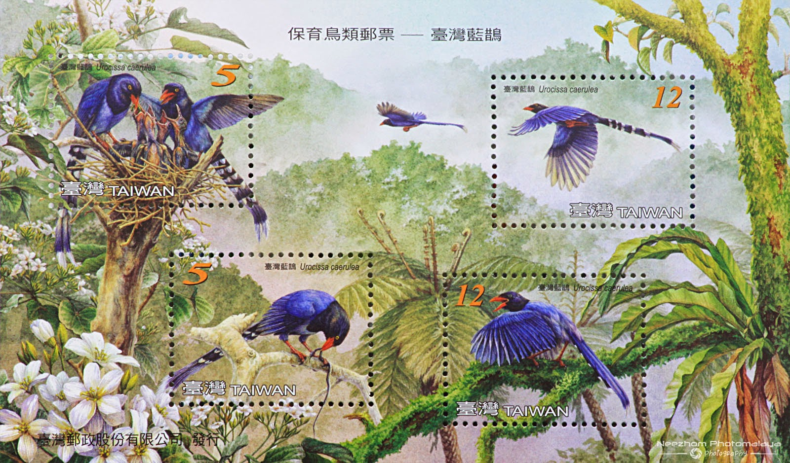 Taiwan 2008 Blue Magpie miniature sheet