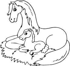 Cute Baby Horse Born Coloring Pages Animals
