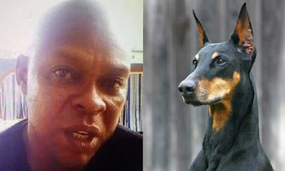 the-man-who-named-his-dog-buhari