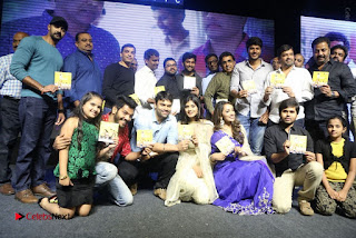 Nanna Nenu Na Boyfriends Telugu Movie Audio Launch Stills  0219.jpg