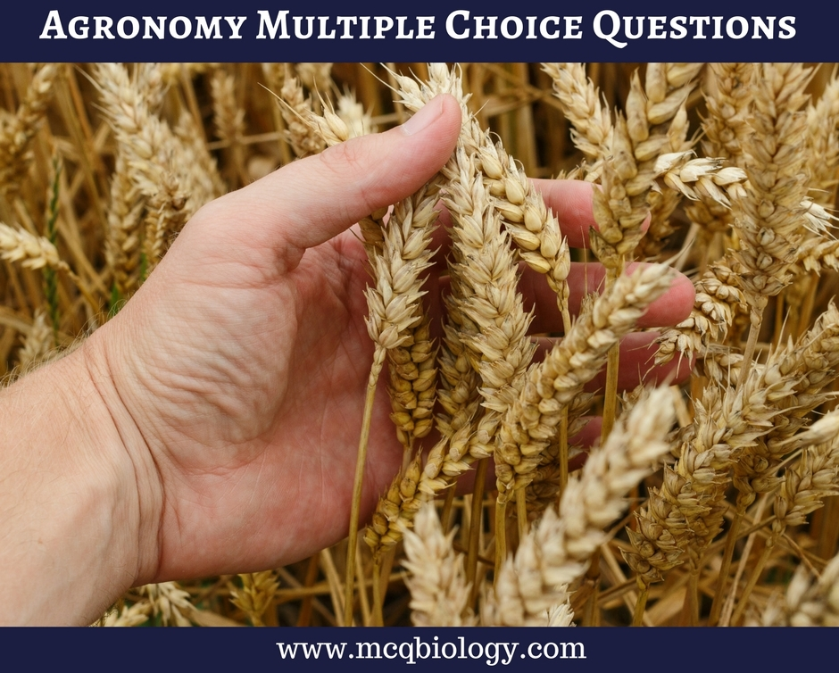 Multiple Choice Questions On Organic Food