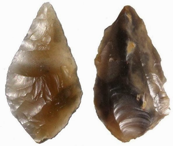 8,000-year-old stone tools unearthed... by rabbits