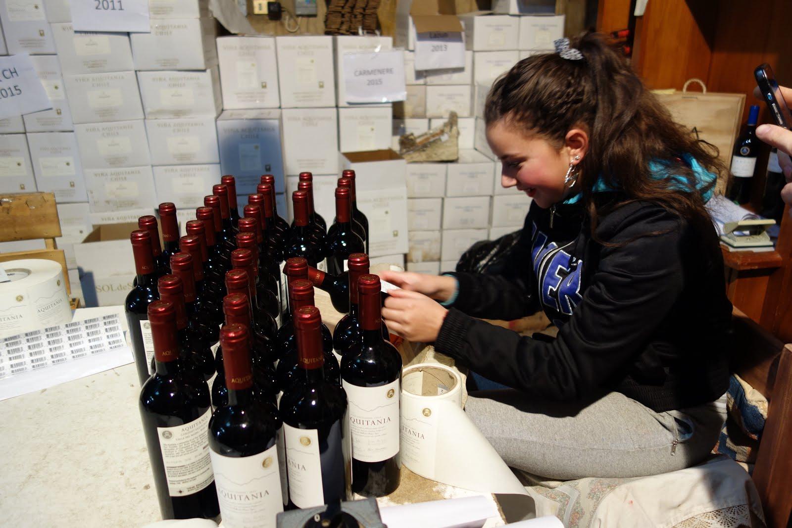 Vale a Pena: AQUITANIA LAZULI (チリワイン2)
