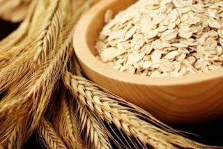 Aveia - Benefícios, Malefícios e Nutrientes Ilustração