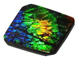 La ammolita es un tipo de molusco fosilizado, pero increiblemente tiene los colores del arcoiris