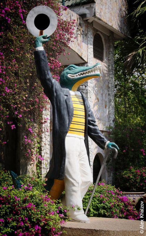 Крокодил в одежде