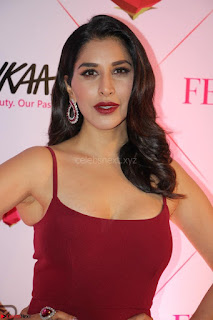 Bollywood Babes at Femina and Nykaa Host 3rd Edition Of Nykaa Femina Beauty Awards 2017 009.JPG