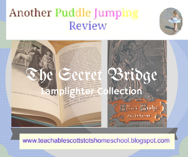 Review, Hashtags: #hsreviews #classicliterature #lamplighter, Christlike character