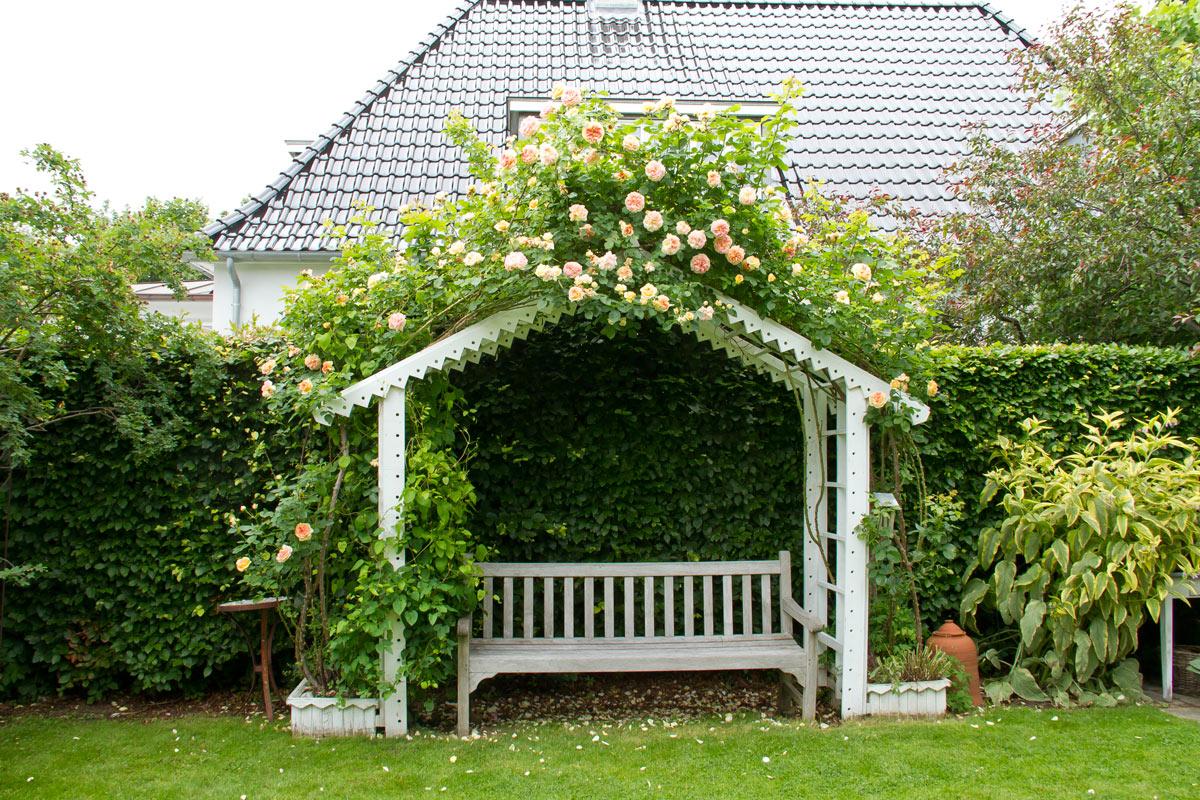 I haven hos Evigglade ♥ : Holtes herligste haver