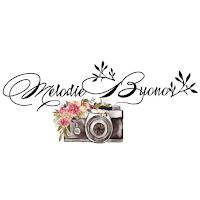 photographe de mariage melodie buono montelimar blog mariage unjourmonprinceviendra26.com