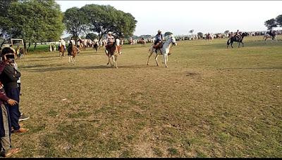 Horse Racing, Silsila Zindagi Ka