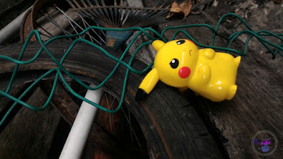 Pertama Kali Dapat Tangkap Pokemon GO !