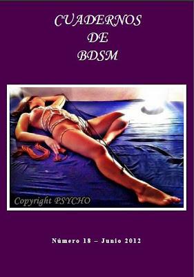 Cuadernos de BDSM 18