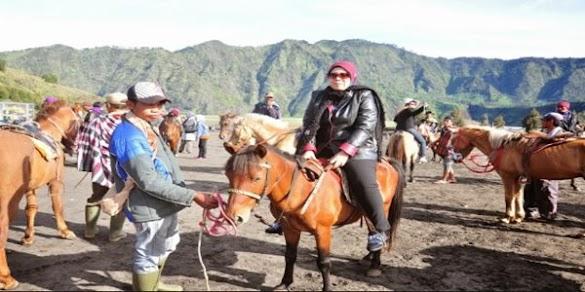 Bisnis Wisata Berkuda Masih Memiliki Prospek Yang Sangat Cerah
