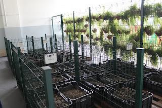 BH Shopping  produz fertilizante a partir do lixo gerado pela praça de alimentação