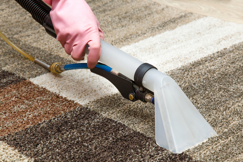 Singapore Carpet Cleaning 6 Weird Carpet Cleaning Methods
