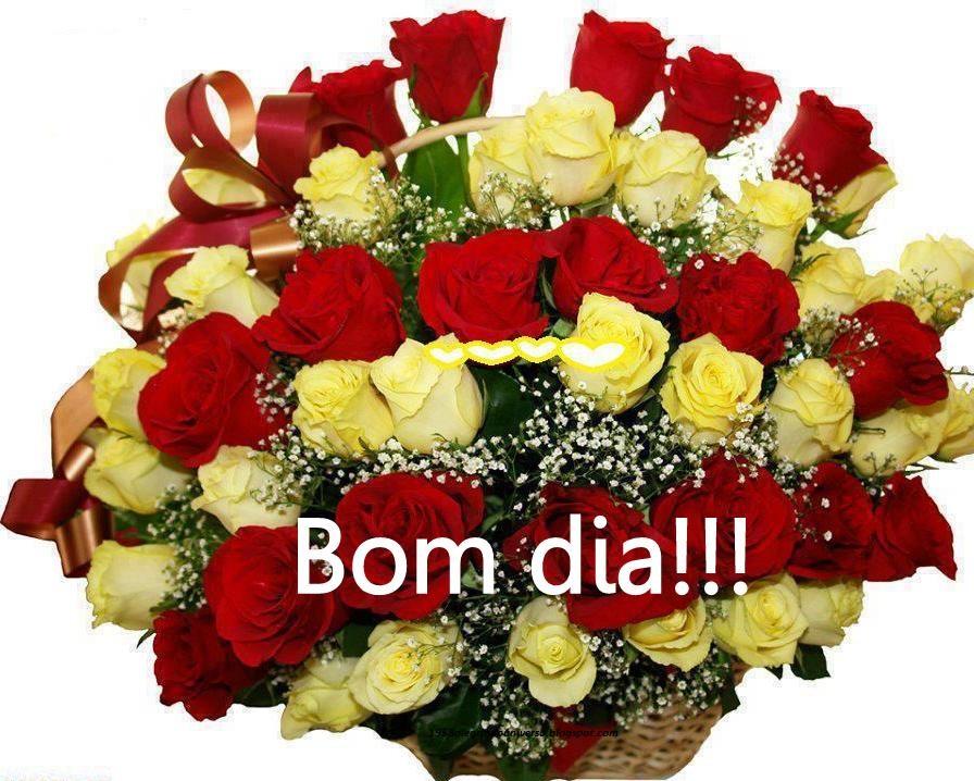 Mensagens Com Flores De Bom Dia: Professora Valdete Cantu: Bom Dia