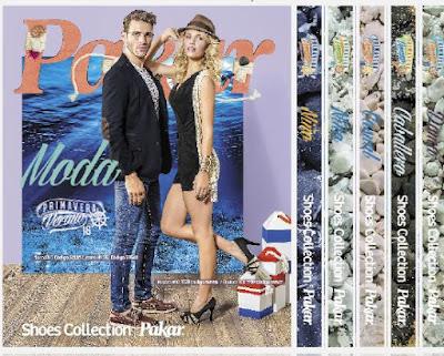 pakar catalogos 2016 en linea