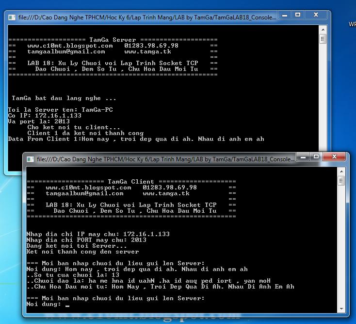 lập trình mạng Console C#