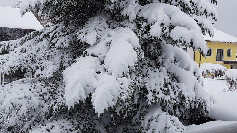 Viel Schnee im Ausnahmewinter 2019