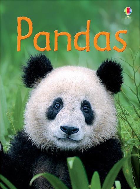 https://g4796.myubam.com/p/4472/pandas-ir