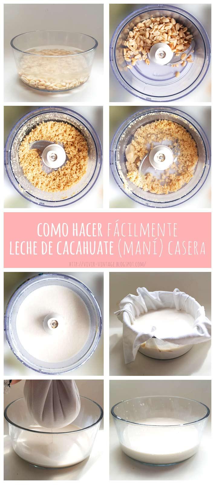 leche vegetal de cacahuate fototutorial