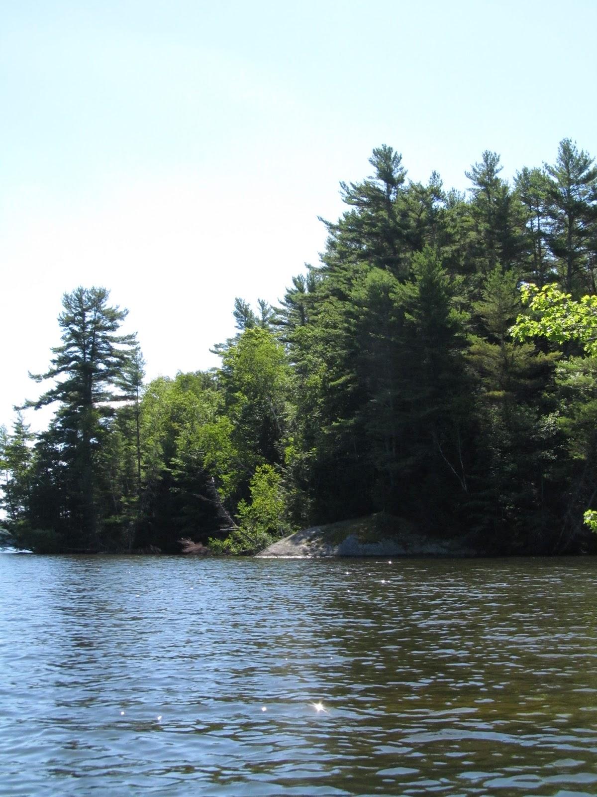 Recreational Kayaking in Maine: Saco River : Hollis Center