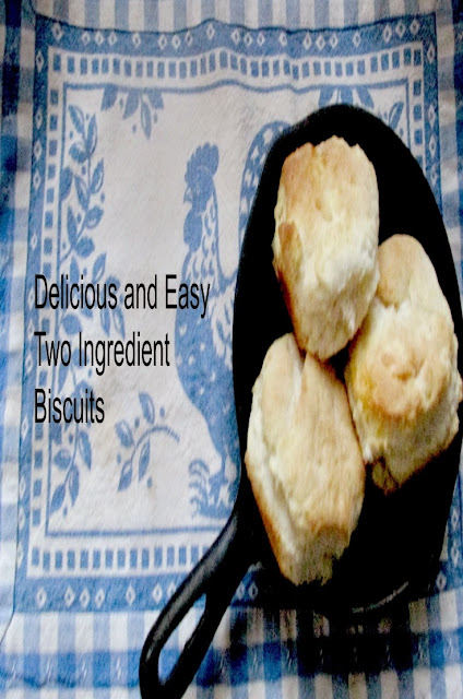 Delicious and Easy Two Ingredient Biscuits