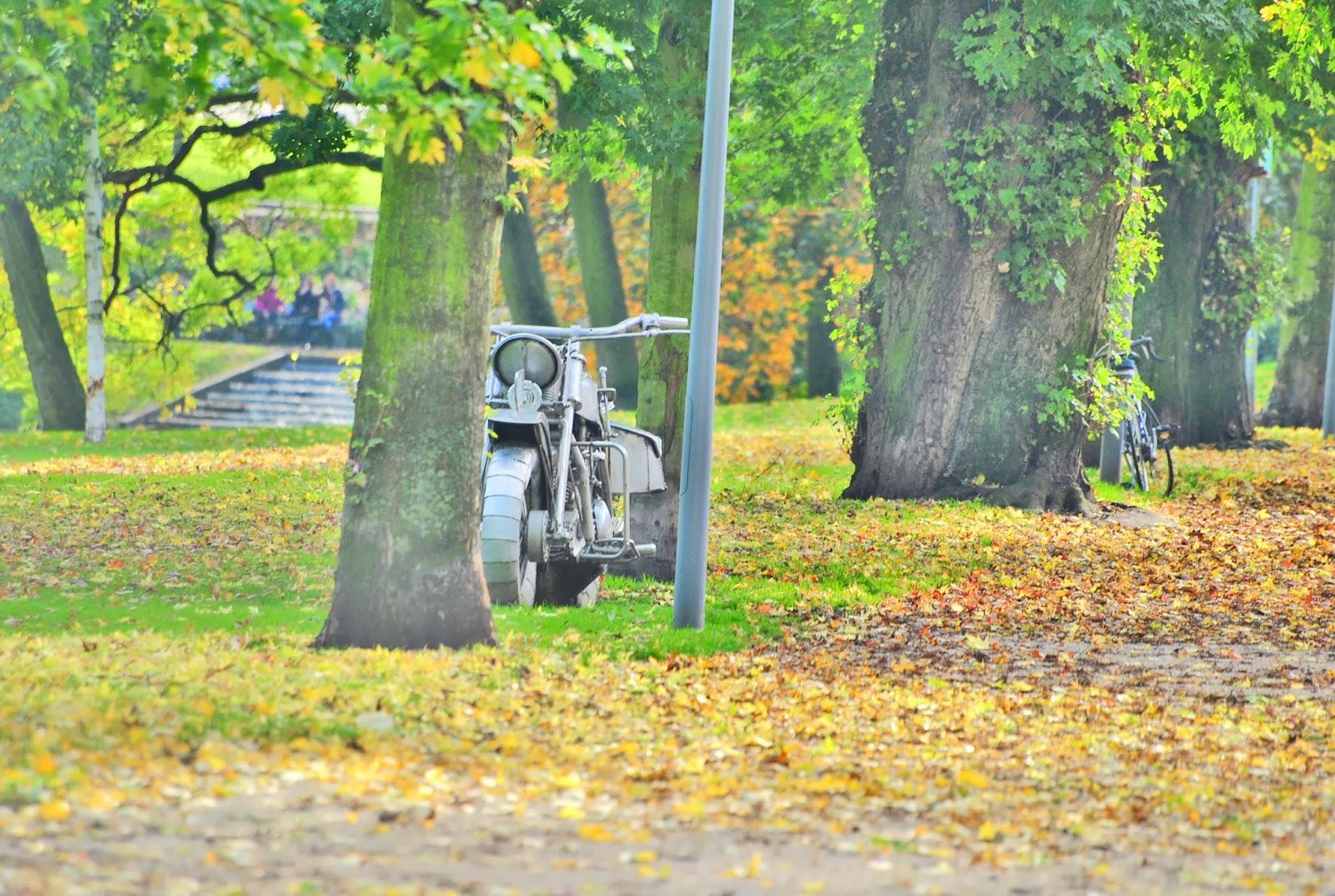 park motor