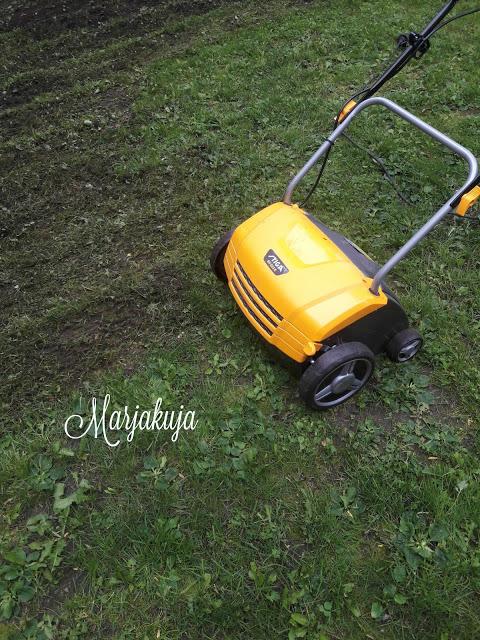 stigalla sammaleen poisto nurmikolta