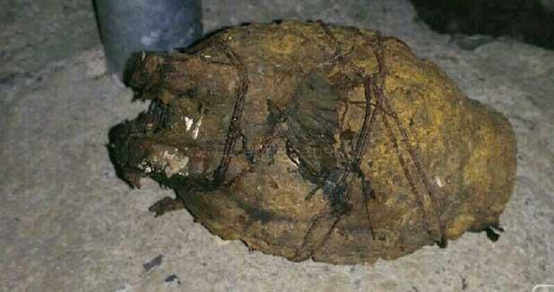 Sebuah benda yang diduga granat nanas ditemukan warga Desa Sumberadi Kecamatan/Kabupaten Kebumen