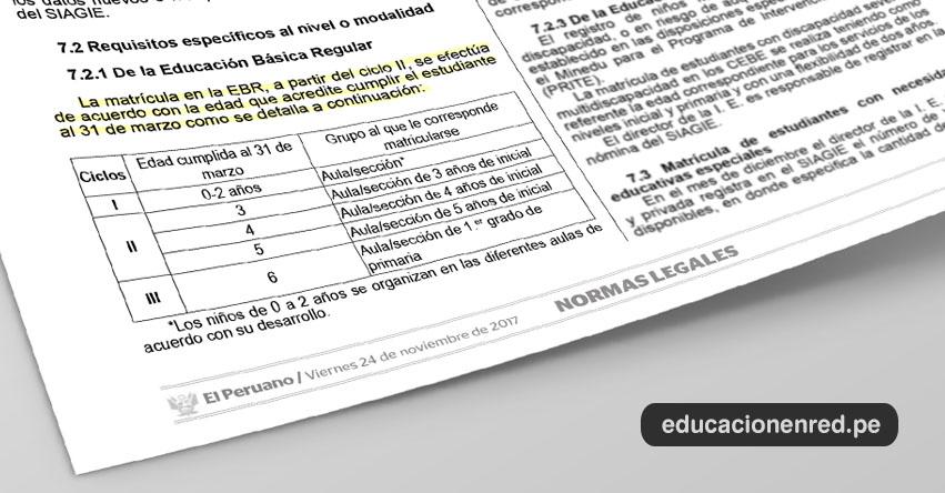 AÑO ESCOLAR 2018: Matrícula para 3, 4 y 5 años se establece en el marco de la Norma Técnica R. M. N° 657-2017-MINEDU