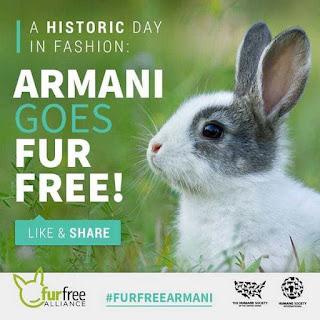 Armani dice Adiós al Uso de Pieles, Ecorresponsabilidad y Moda