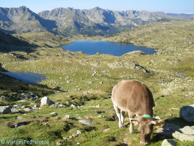 Les millors rutes senderistes per Andorra, senderisme, trekking, patrimoni de la humanitat, unesco, vall del Madriu-Perafita-Claror
